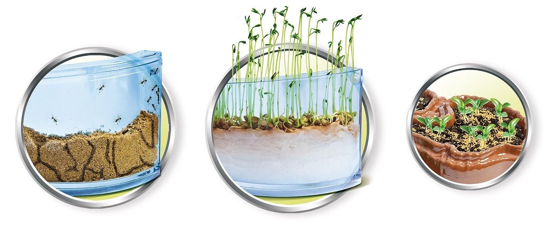 creative toy company world beneath our feet ant farm plant. Black Bedroom Furniture Sets. Home Design Ideas