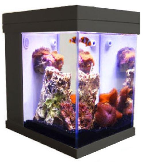 ... JBJ Mini Cubey 3 Gallon Pico LED Series Nano Cube Aquarium Fish Tank